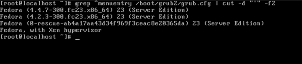 Figure 14 - Grub Entry.png
